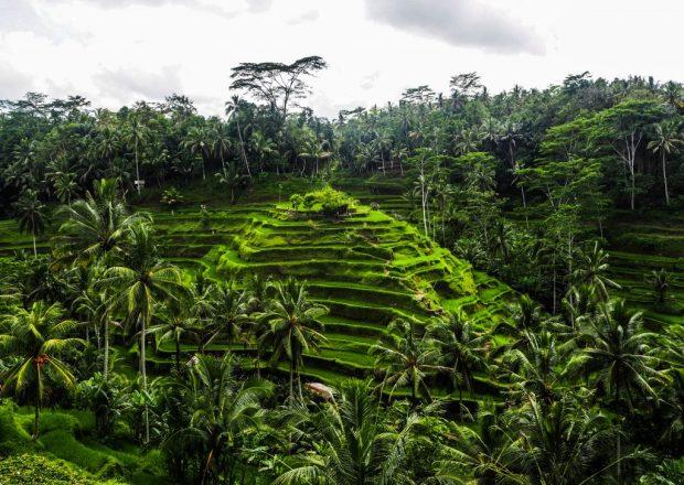 voyager-bali-indonesie-photographie-7-1024x727
